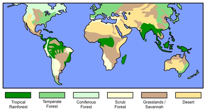 G2 ecosystems and biomes bioninja g211 outline the characteristics of six major biomes gumiabroncs Images