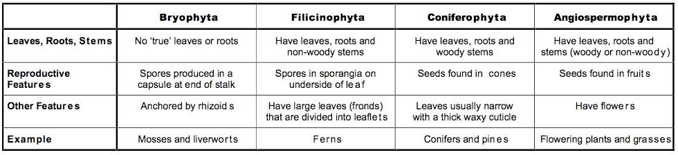 5 5 Classification   BioNinja